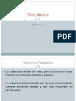 Neoplasias....