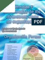 Ventajas y desventajas de los diferentes tipos de organización Administración de Recursos Humanos