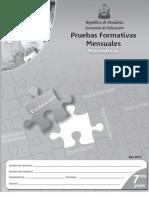 Prueba Formativa 7º Matemáticas (2010)