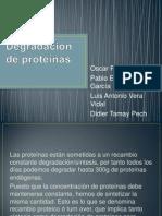 Degradación de proteínas