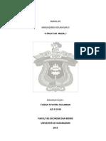 Manajemen Keuangan II(Struktur Modal)