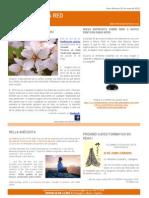 News Reikistas 31-05-2012
