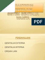 Organ Genitalia Wanita (2) - Copy