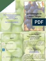 Brochure Vignerons