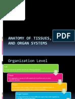 Anatomy of Tissues, Organs,