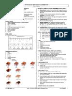 21804377 Physical and Neurological Examination