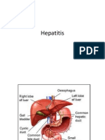 Hepatitis 97