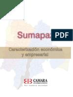 6234_caracteriz_empresarial_sumapaz