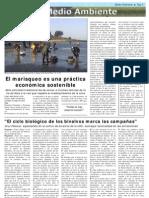 Reportaxe sobre o marisqueo en Noia Entrepontes El País de los Estudiantes 2012