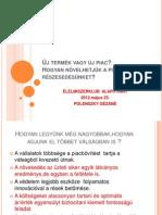 Polenszky Új termék vagy új piac?