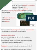 Microbial Genetics 6 