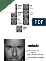 Paul Ekman - Catalogo de Gestos Faciales