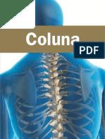 Coluna_SBR