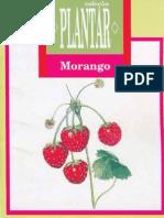 Colecao Plantar Morango