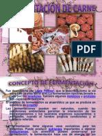 carne fermentada (2)
