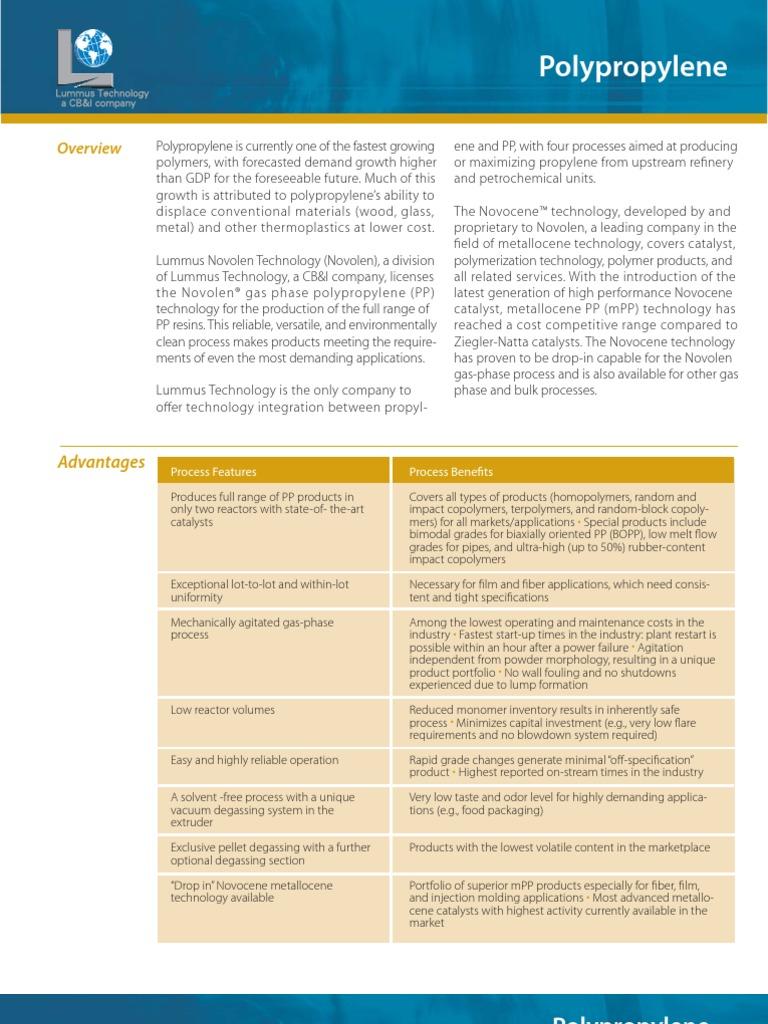 Lummus Polypropylene | Polymers | Chemical Reactor