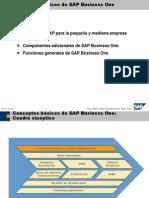 1 Conceptos básicos de SAP Business One