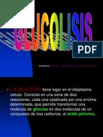 EXPOSICON DE GLUCOLISIS