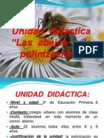 Presentación+unidad+didáctica+polinización.