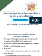 Infecciones_de_piel_y_tejidos_blandos_y_por