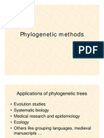 Phylogeny Analysis