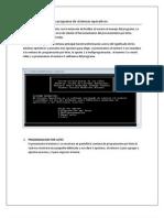 Manual de Usuario de Programa de Sistemas Operativos
