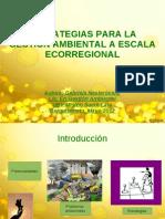 Estrategias Para La Gestion Ambiental Ecorregional