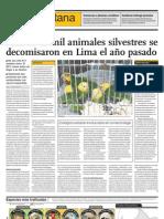 Más de 12 mil animales silvestres se decomisaron en Lima el año pasado