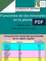 Funciones de Los Minerales en Las Plantas