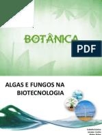 Biotecnologia