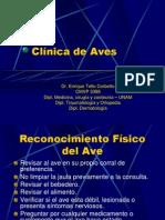 Clinica_de_Aves_1