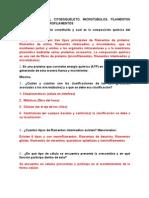 CUESTIONARIO  ORGANIZACIÓN DEL CITOESQUELETO