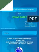 Vikas Dairy by Sun
