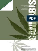 Cannabis Info Lehrer