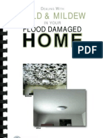 Fema Mold Brochure English