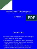 Metabolism and Energetics