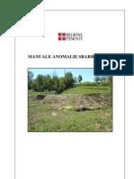 manuale_anomalie_sbarramenti2010