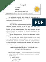 08-02-20Aparelho_urinario_partes_II_e_III (1)