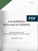 Los Problema de La Raza en Colombia - Estudio Intro Duc to Rio