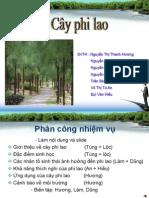 Copy of CA the Phi Lao