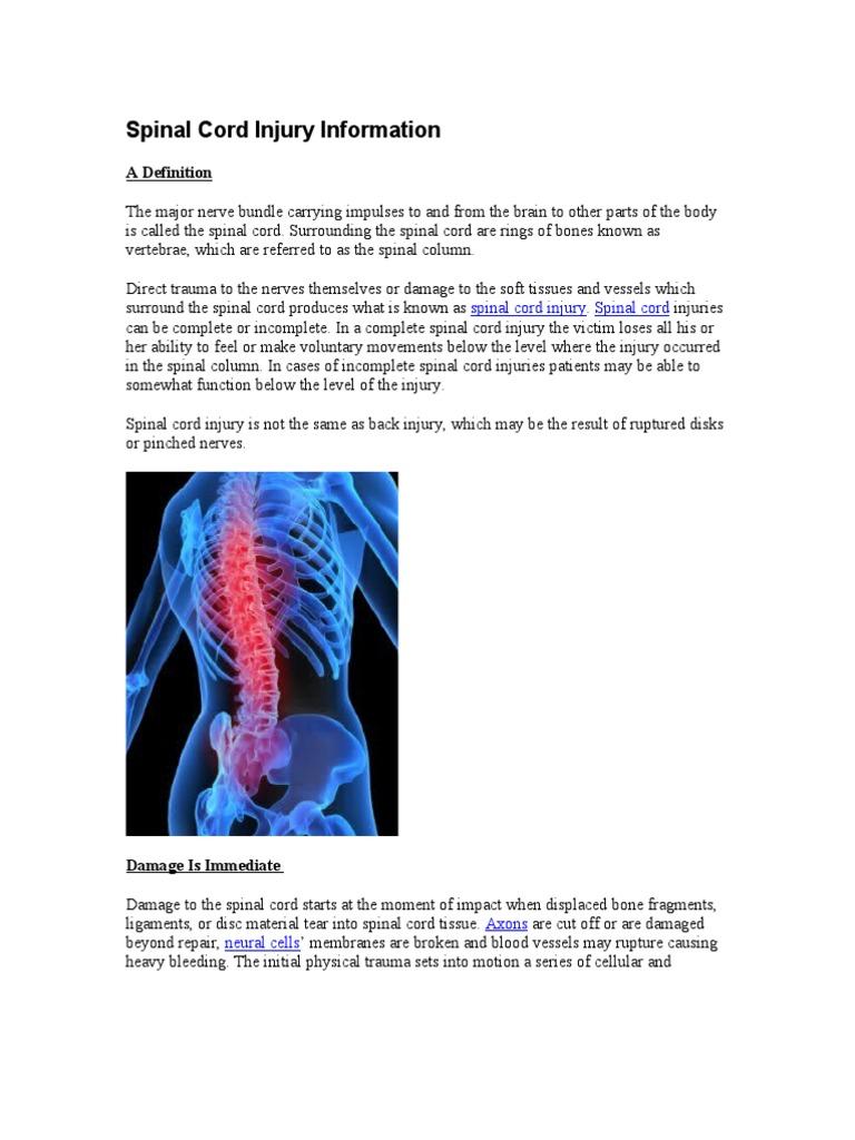 Spinal Cord Injury Information | Spinal Cord Injury | Vertebral Column
