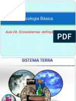 Aula 9 - ecossistema
