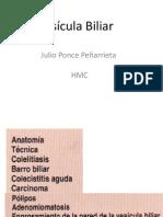 Vesicula Biliar Julio Mdidle 1
