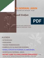 FKUI OBGIN USG OB Induksi, Morfologi Normal Janin, JJE 20120529