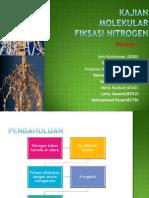 Kajian Molekular Fiksasi Nitrogen