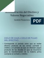 Administración del Efectivo y Valores Negociables