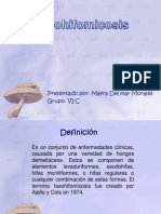 Expo Feohifomicosis