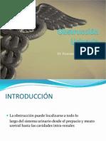 Obstruccion Urinaria 2012