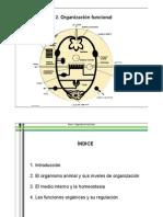 Tema+2.+Organización+funcional