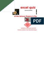 Excel Quiz Hiba